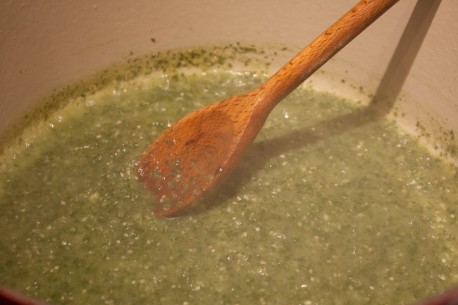 20140920_Green Chilaquiles_IMG_8762_edited-1